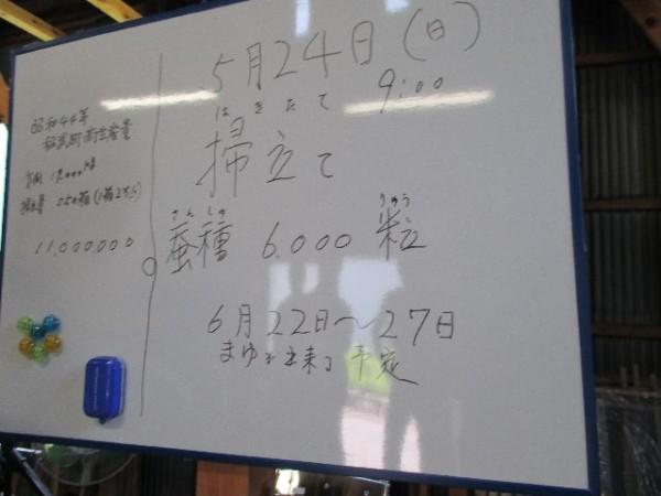 IMG_0384小